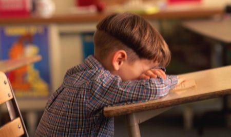 [Artigo] O Processo de Adaptação na Escola – Parte 2